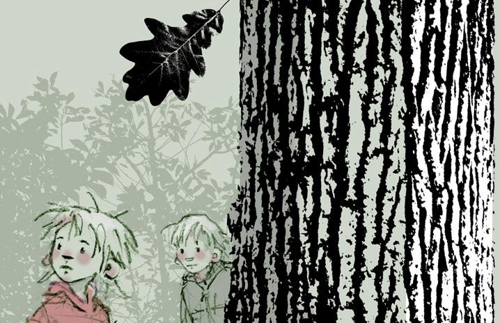 eikenboom 5